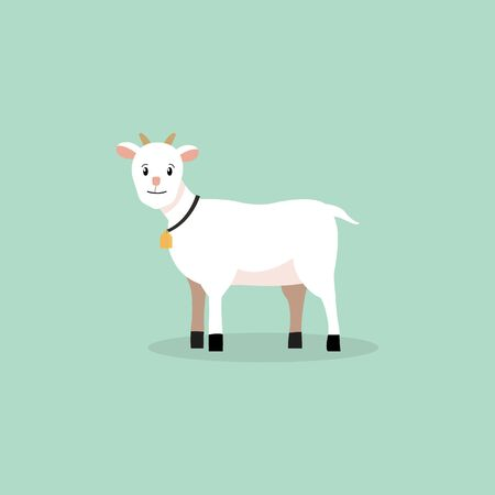 Cute baby goat with bell vector illustration.Farm goat character isolated background