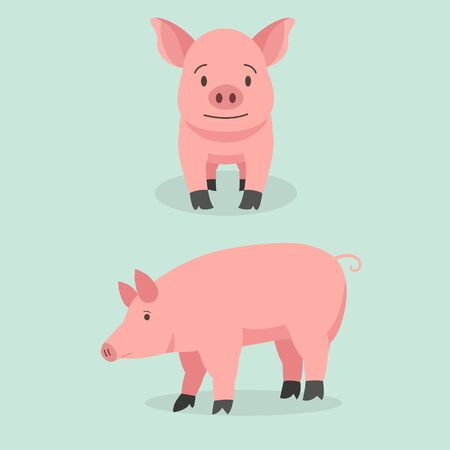 Cute cartoon pig set vector illustration. Piggy front and side view character design
