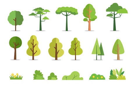 Trees and bushes set flat style vector illustration.Cartoon forest tree.Plant and flowers.Tree isolated background