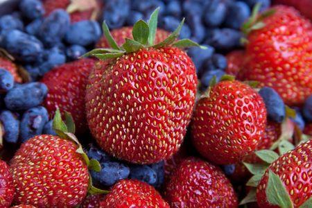 berries of wild strawberry and honeysuckle  photo
