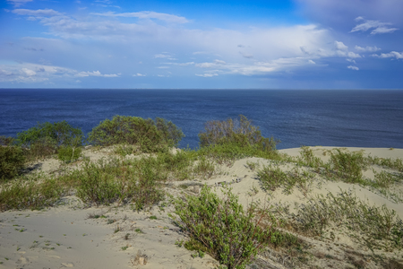 Sea landscape of the Baltic sea with coastal sand dunes of the Curonian spit. Imagens