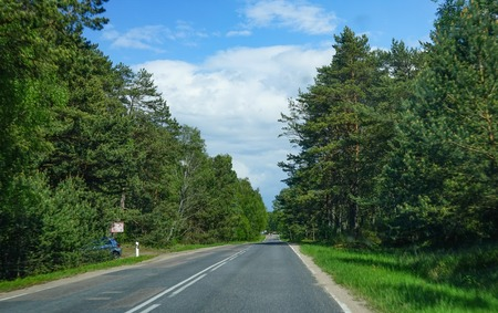 Landscape with the road to the Curonian spit, Kaliningrad region.