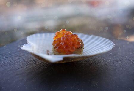 Red caviar on a scallop fillet and on a white shell on a dark slate background. Zdjęcie Seryjne