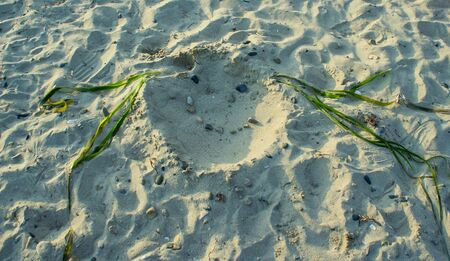 Sandy beach with portrait made of natural materials.