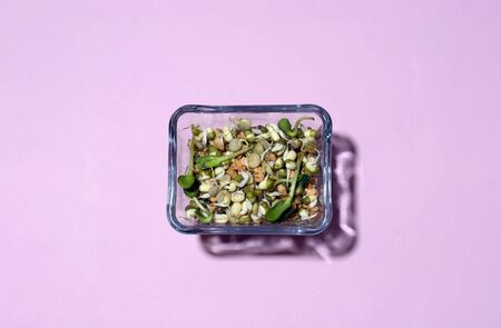 Sprouted seeds of grain crops in a glass container on a pink background 写真素材
