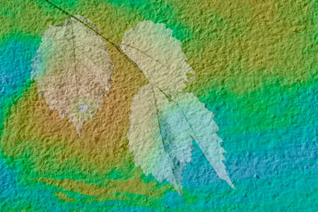 Abstract texture layer of the wall with an imprint of yellow leaves 写真素材