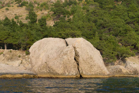 view from the sea on a rocky coastline covered with green pine trees