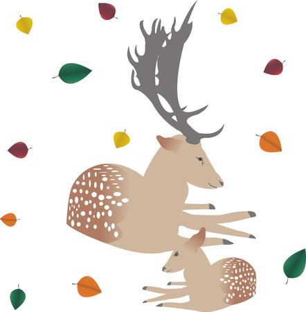 ungulate: deer and deer Illustration
