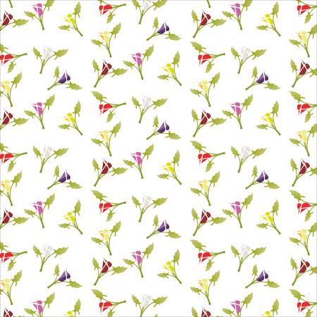 multicolored: pattern of multi-colored calla lilies vector illustration Illustration