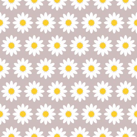 brawn: pattern Daisy flower on brawn background