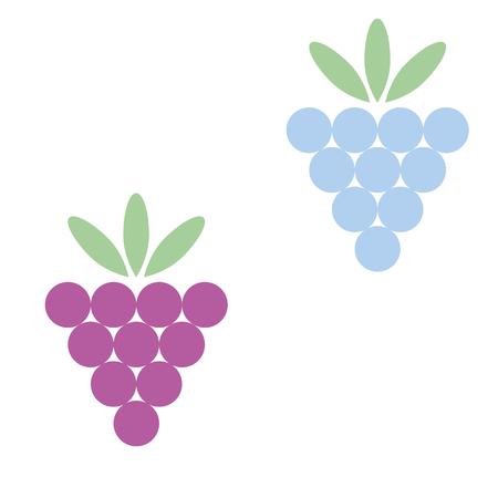 raspberries: vector illustration of blackberries and raspberries Illustration