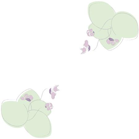 violet flower: blue violet flower with green leaves