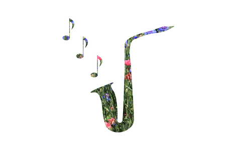 wind instrument: musical wind instrument from saxophone colors