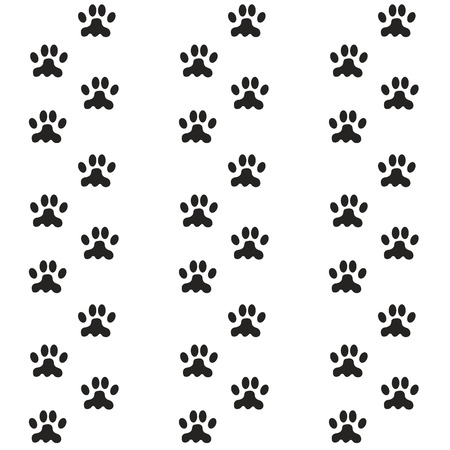 animal leg: footprints of the animal, the cats paws