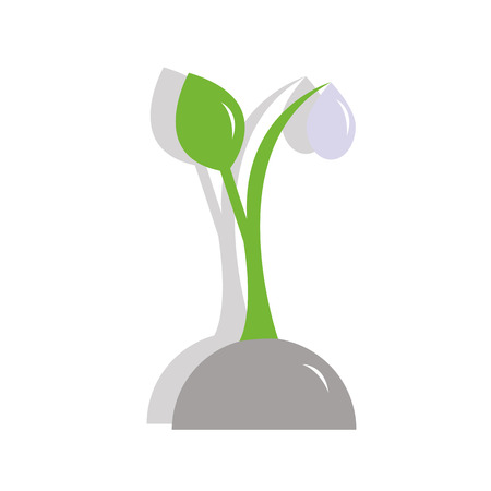 sprout plants with a water drop of dew Illustration