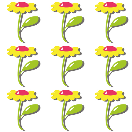 plants and flowers: color cartoon flower of daisy with petal