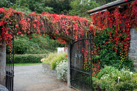 Gateway to the autumn garden. Stock Photo
