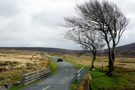 The road to Sally Gap.Ireland. 写真素材