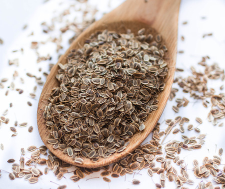 dill seed: Dill seed