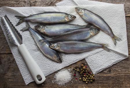 whitefish: freshly caught whitefish