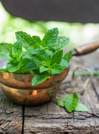 fresh leaf: Fresh mint on a wooden table. The rustic style. Selective focus Stock Photo