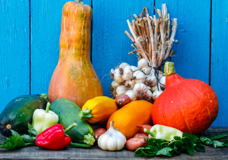 Organic fresh vegetables - pumpkin, shallots, garlic, bell pepper, celery, zucchini, yellow squash on the background of blue boards. A rustic style. Selective focus