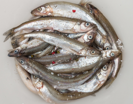 fish tail: Fresh smelt for frying with spices. Small fish. Selective focus