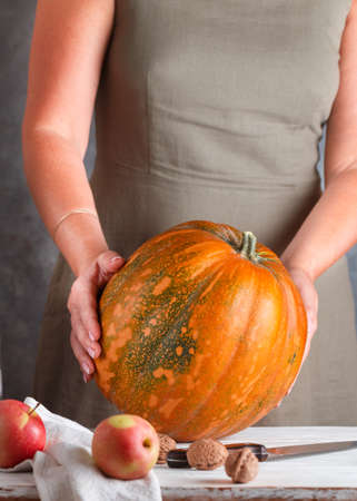 Whole large organic pumpkin in women's hands, ripe apples and walnuts on the table. Thanksgiving, Halloween. Autumn harvest. Selective focus