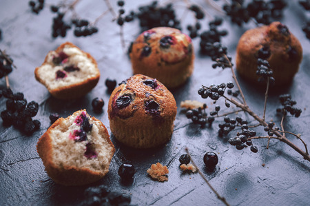 blueberry muffin: muffin with currants on a dark background next to the berries on the branches. in a rustic style. dark style