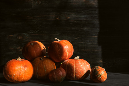 ripe pumpkins on a wooden floor. preparation for halloween