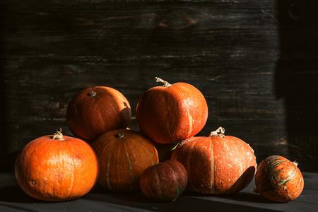 ripe pumpkins on a wooden floor. preparation for halloween
