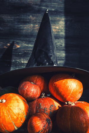 pumpkin and witch hat. Halloween party concept Stock Photo
