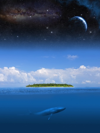 ballena azul: Abstracción de la imagen de la isla desierta en el océano bajo la estrella del cielo