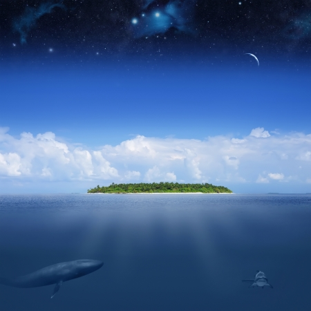 Abstract image of Earth with underwaters life under stars sky