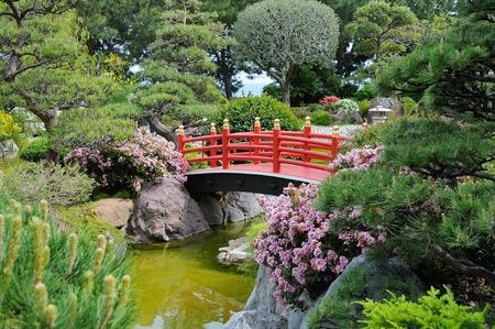 japanese flower: A wooden bridge in the Japanese Garden in Monte-Carlo