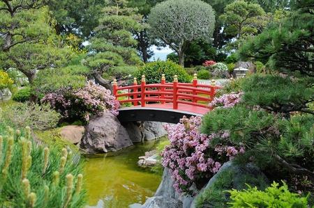 garden landscape: A wooden bridge in the Japanese Garden in Monte-Carlo