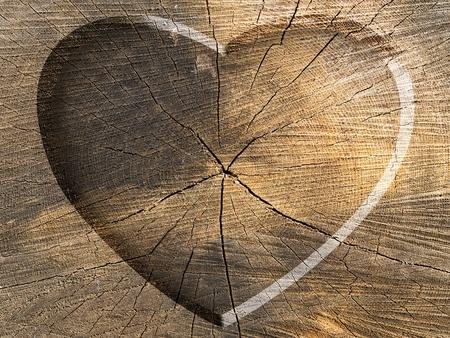 Heart Shape Carved on a Tree Cut Stock Photo