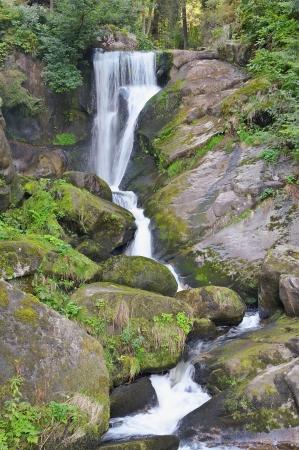 Beautiful forest waterfall  The highest waterfall in Germany