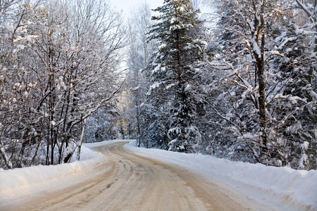 a turn of a winter road in snow forest photo