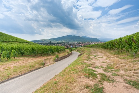 view on small town on Alsace Wine Route , France Stock Photo - 8911211