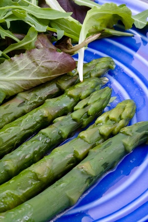 boiled green asparagus with salad mix on blue plate photo