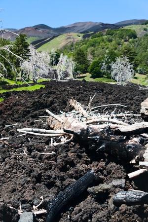 clinker: nera colata lavica clinker sul verde pendio dell'Etna, in Sicilia