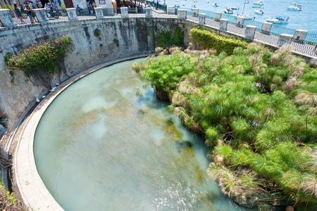 SYRACUSE, ITALY - JULY, 3: Fountain of Arethusa, mythologic source in Syracuse, Italy on July 3, 2011 Stock Photo - 10793095