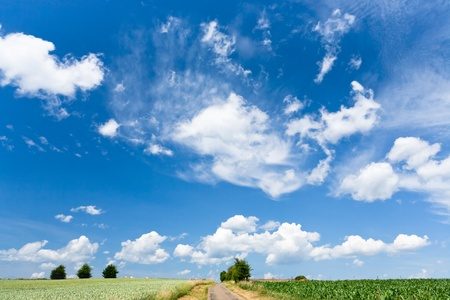 country scenery under high blue sky at summer day photo