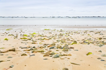 seafront: sand seacoast of English Channel in Brittany