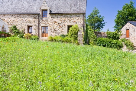 green grass lawn on backyard of old breton estate, France photo