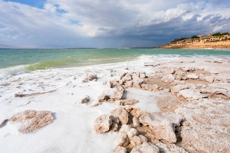 sal: cristal de sal en la playa de la costa del Mar Muerto, Jordania