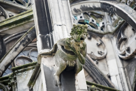 grotesque: fragment of Gothic cathedral wall with gargoyle Stock Photo