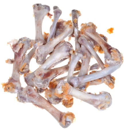 leavings: picked chicken bones isolated on white background Stock Photo