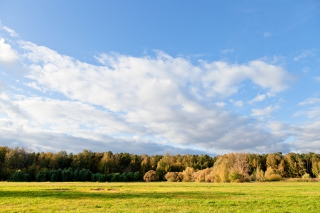 blue sky and white clouds above green lawn in autumn forest Stock Photo - 15653838